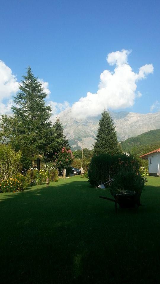 Κήπος με θέα στα Τζουμέρκα - The Tzoumerka mountains in the background